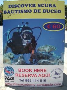 padi-scuba-diving2